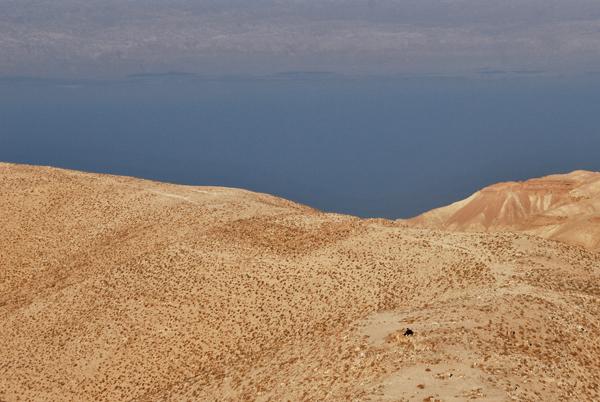 Pastore, Giordania