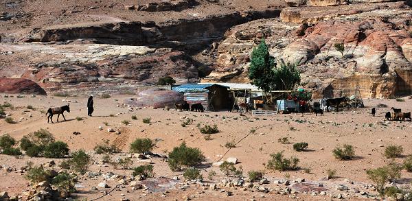 Petra, accampamento beduino