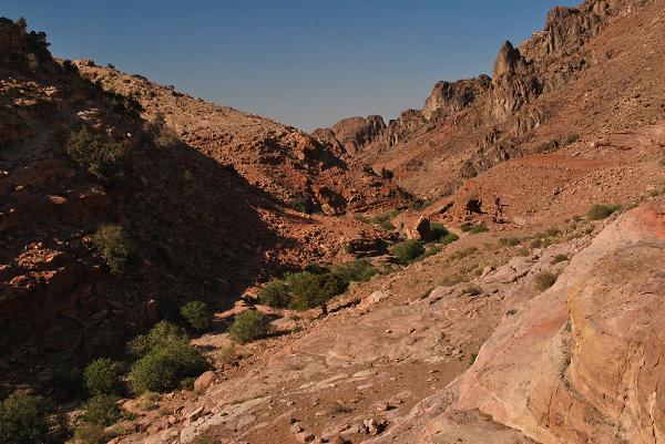 Petra, un wadi